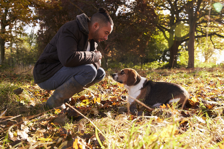 Young Man Exercising Dog In Autumn Woodland