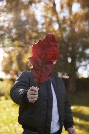 Boy Playing With Autumn Leaf in Garden