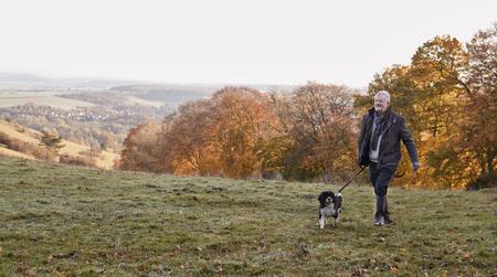 秋の風景の中の散歩に犬を取って年配の男性