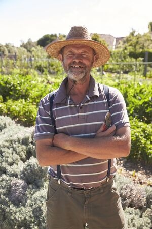 self sufficient: Portrait Of Mature Man Standing In Community Allotment