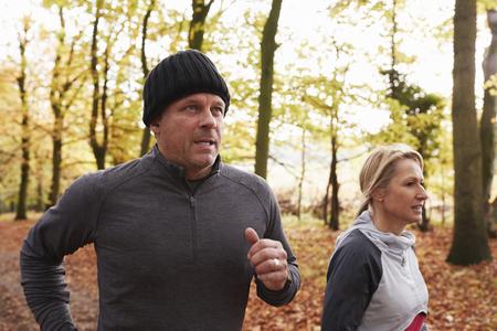 成熟したカップルは秋の森林を一緒に走ります