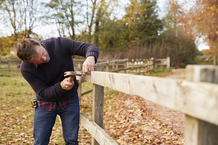 Mature Man Hammering Nail Into Repaired Fence Stok Fotoğraf