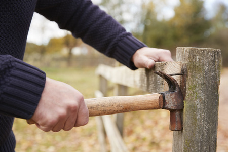 Mature Man Removing Nail From Fence Being Repaired Stock Photo
