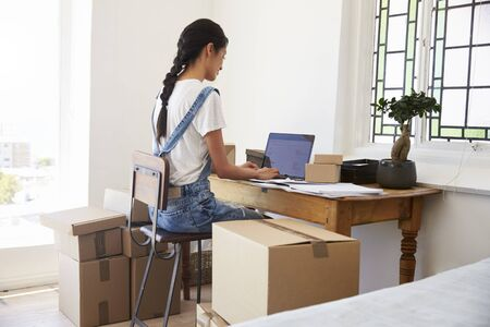 Rear View Of Woman Running Business From Home Dispatching Goods Stock Photo