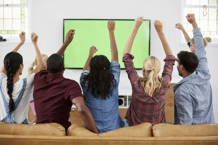 Group Of Young Friends Watching Sports On Television And Cheering Reklamní fotografie