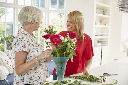 Senior woman and adult daughter arranging flowers at home Stock Photo