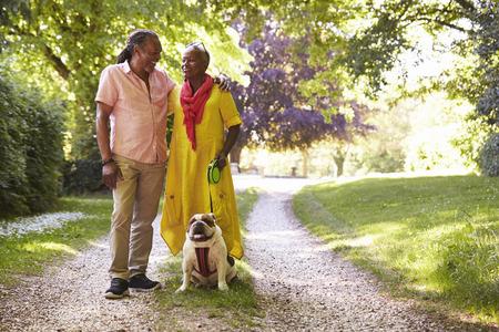 田舎でペットブルドッグと歩くシニアカップル