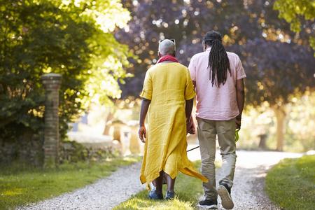 田舎のペットのブルドッグを歩くシニア カップルの背面図