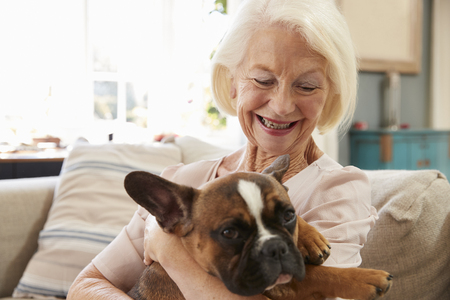 Senior Woman Sitting On Sofa At Home With Pet French Bulldog