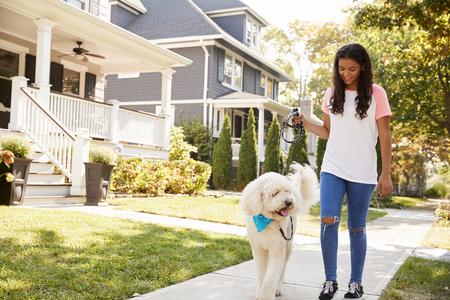 Girl Walking Dog Along Suburban Street Stock Photo