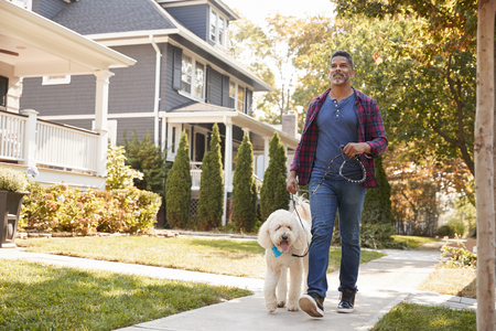 Man Walking Dog Along Suburban Street