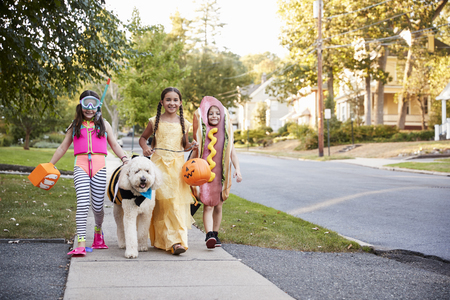 Children And Dog In Halloween Costumes For Trick Or Treating Stockfoto