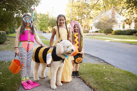 Dzieci i pies w kostiumach na Halloween do trick lub leczenia