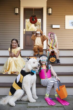 Children And Dog In Halloween Costumes For Trick Or Treating Standard-Bild