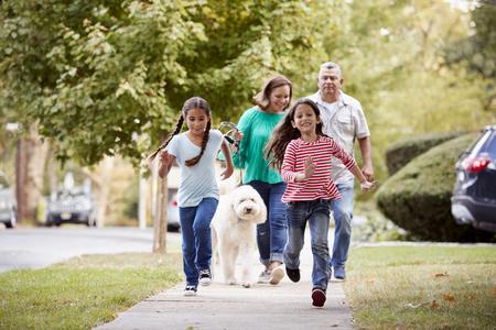 조부모와 손녀 거리를 따라 개를 산책 스톡 콘텐츠