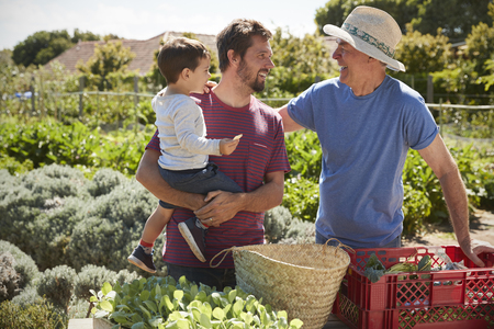 Father With Adult Son And Grandson Working On Allotment
