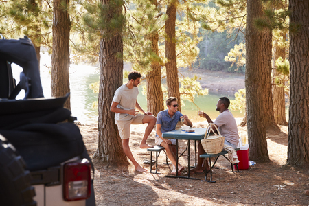 Three male friends talking at a picnic table by a lake