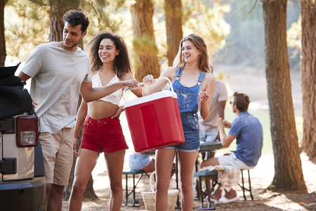 Three young adult friends with a cool box by a lake