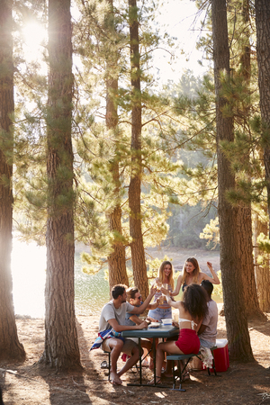 Group of friends hanging out at a table by a lake, vertical Stock Photo