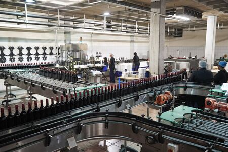Colleagues working in the bottling plant at a wine factory Stock Photo