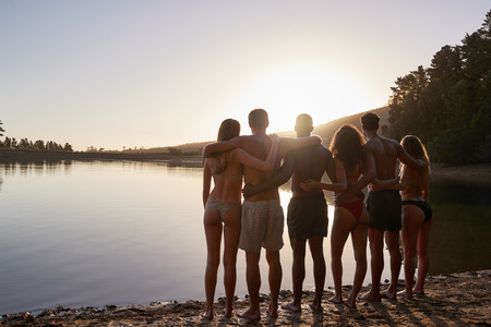 Young adult friends admiring view from lakeshore, back view