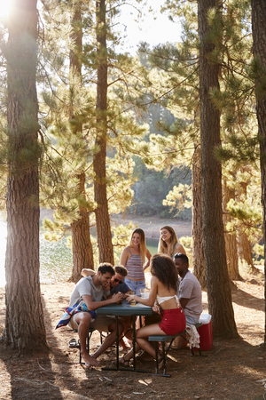 Group of friends hanging out at a table by a lake, vertical Reklamní fotografie