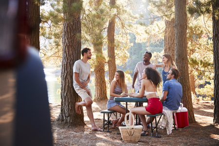 Group of young adult friends hanging out by a lake Reklamní fotografie