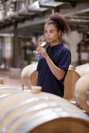 Young woman wine tasting in wine factory warehouse, vertical Stock Photo