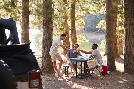 Three male friends make a toast at a picnic table by a lake