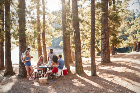 Group of young adult friends hanging out by a lake Stock Photo