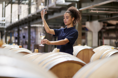 Young woman testing wine in a wine factory warehouse Stock Photo
