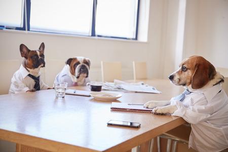 Tres perros disfrazados de empresarios que se reúnen en la sala de juntas
