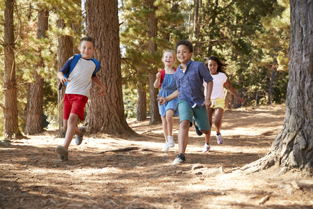 Children Running Along Forest Trail On Hiking Adventure