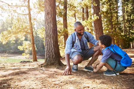 Father And Son On Hiking Adventure In Woods By Lake Stock Photo