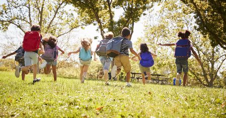 Group of schoolchildren running in a field, back view