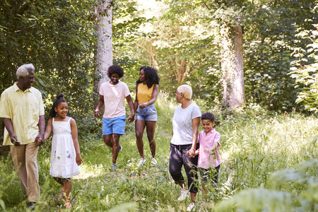 Multi generation black family walking together in a forest Stock Photo