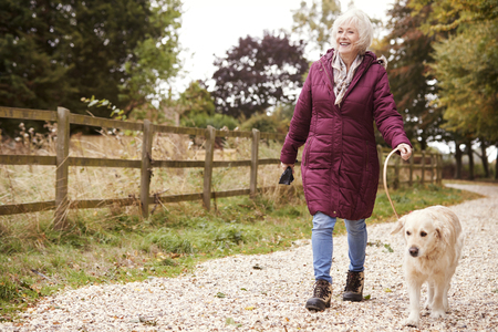 Active Senior Woman On Autumn Walk With Dog On Path Through Countryside Standard-Bild