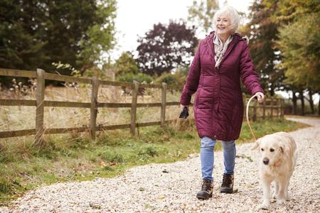 Mujer senior activa en otoño caminar con perro en camino a través de la campiña