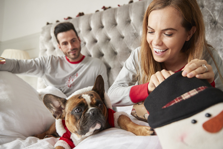 Couple In Bed At Home With Dog Dressed In Santa Costume Opening Gifts On Christmas Day