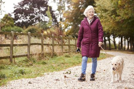 Active Senior Woman On Autumn Walk With Dog On Path Through Countryside Stock Photo