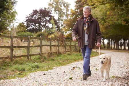 Active Senior Man On Autumn Walk With Dog On Path Through Countryside Stock Photo