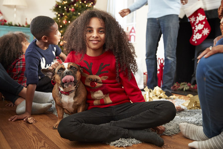 Portrait Of Girl With Pet French Bulldog Celebrating Family Christmas At Home Together Stok Fotoğraf