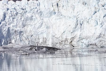 Close Up Detail Of Glacier In Glacier Bay Alaska USA Stock Photo