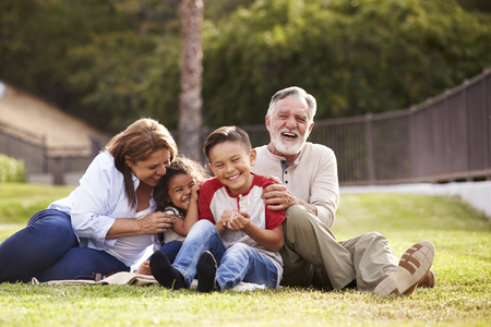 Hispanic grandparents sitting on the grass in the park with their grandchildren laughing, low angle