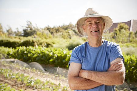 Portrait Of Mature Man Standing On Allotment Stockfoto