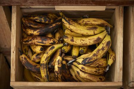 Display Of Bananas In Sustainable Plastic Packaging Free Grocery Store 版權商用圖片