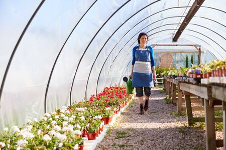 Mature Woman Working In Garden Center Watering Plants In Greenhouse With Watering Can