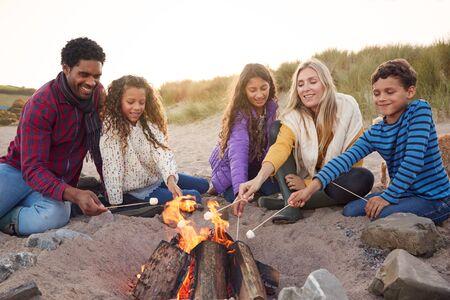Multi-Cultural Toasting Marshmallows Around Fire On Winter Beach Vacation Фото со стока