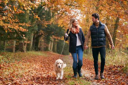 Loving Couple Walking With Pet Golden Retriever Dog Along Autumn Woodland Path Through Trees Foto de archivo