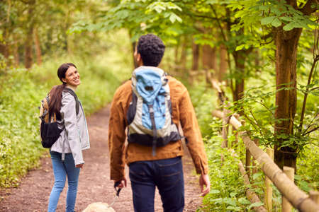 Rear View Of Couple With Pet Dog Hiking Along Path Through Trees In Countryside Standard-Bild